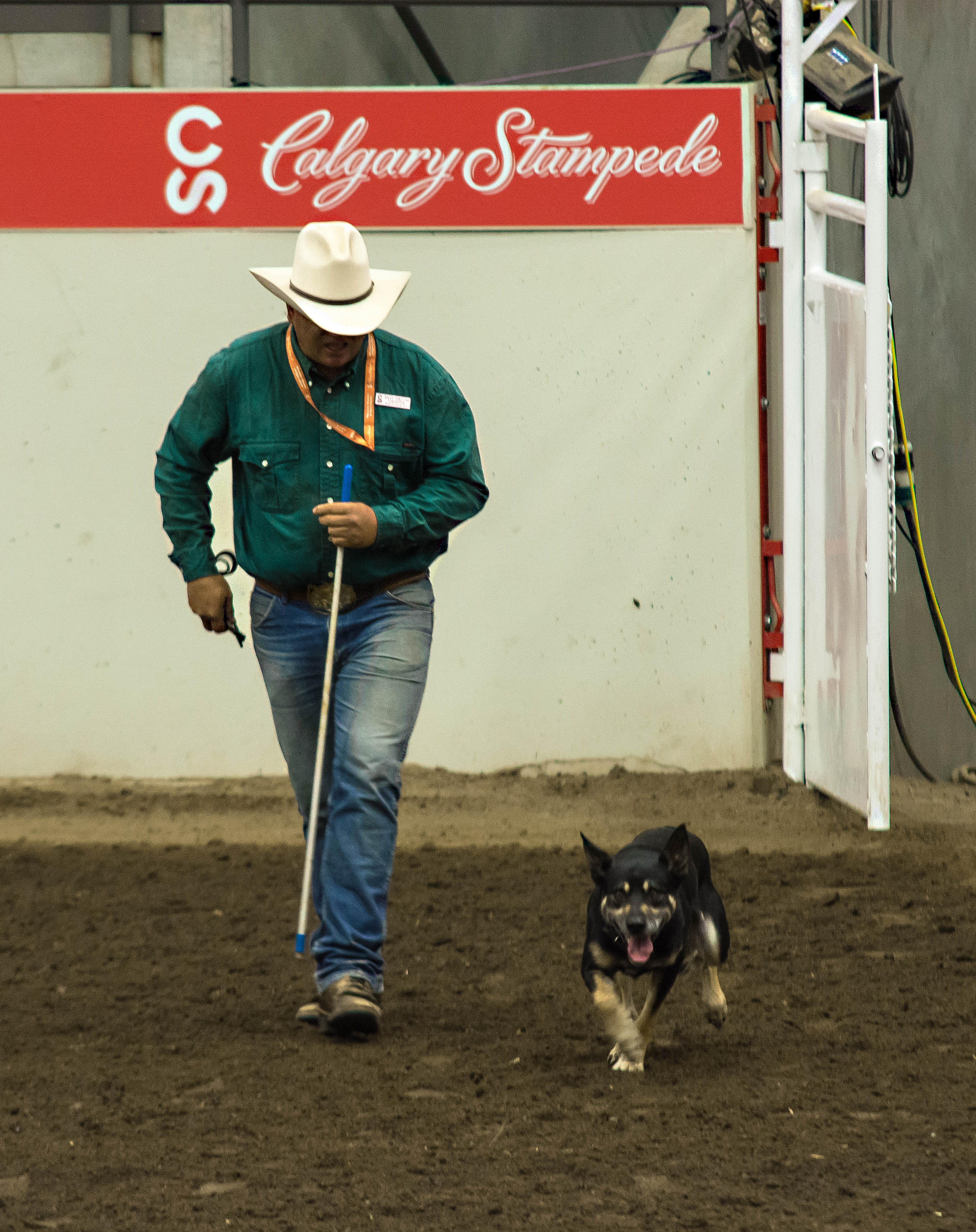 Chuck at Calgary Stampede